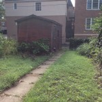 Before-rear yard